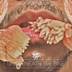 new favorite album // Toro y Moi : Underneath the Pine